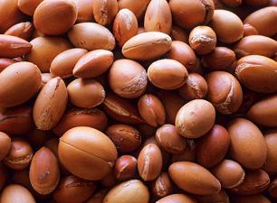Utilisez l'huile d'argan pour des cheveux sains !